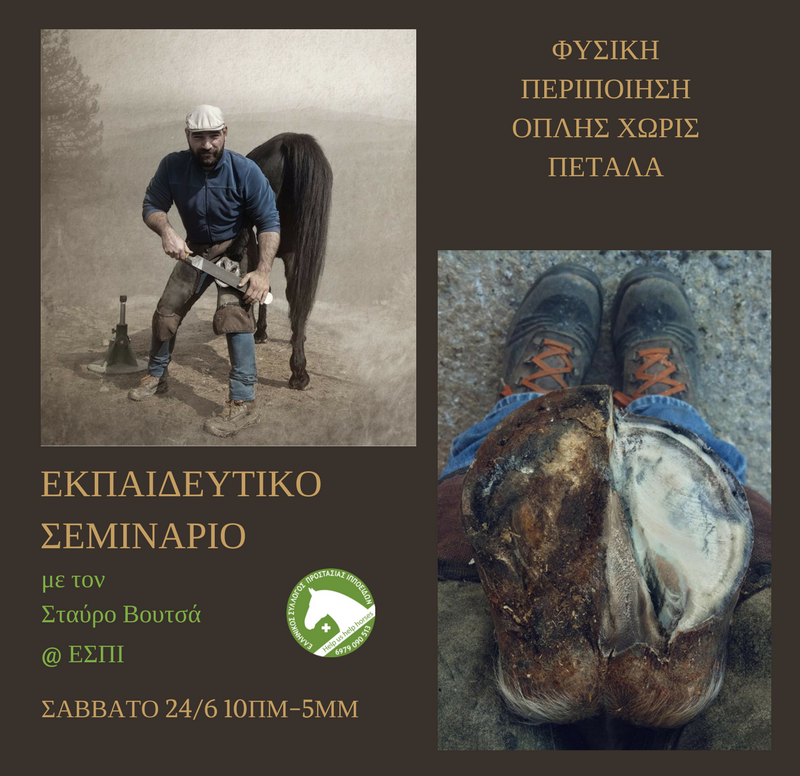 Natural Hoof Care Seminar with Stavros Voutsas